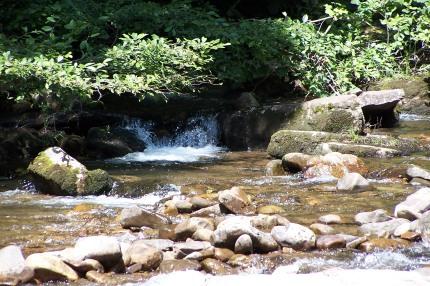 river rock collection spot near harrisonburg