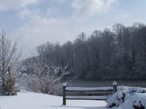 redwood lake