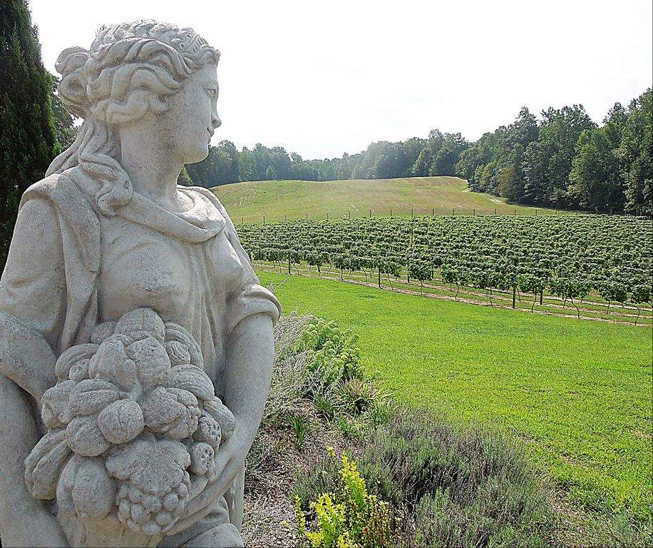 southern maryland wineries