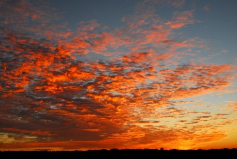 morning-sky-on-fire-209c9