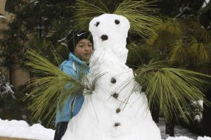 amman snow man
