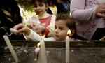IRAQ_-_natale_festa
