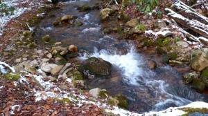 tennessee stream