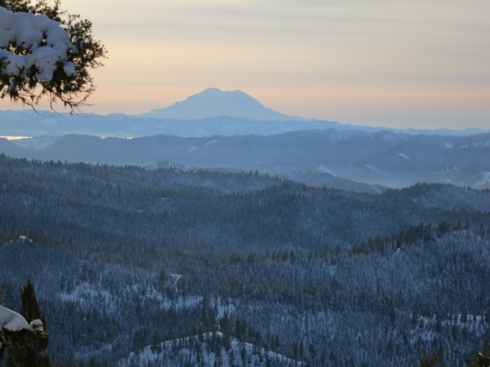 winterforest cascades washington