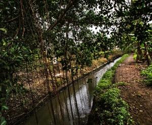 hersh ditch