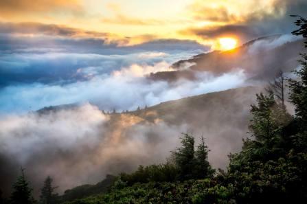 california king range